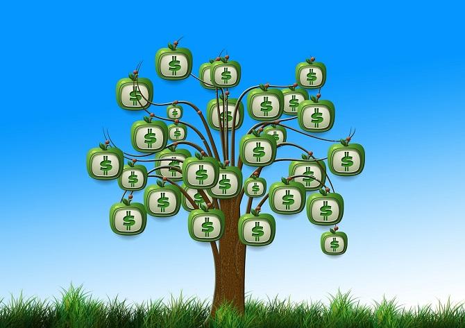 כסף גדל על עץ
